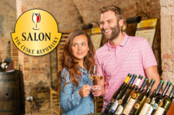 salon-vin-cr_foto-2015_logo-4
