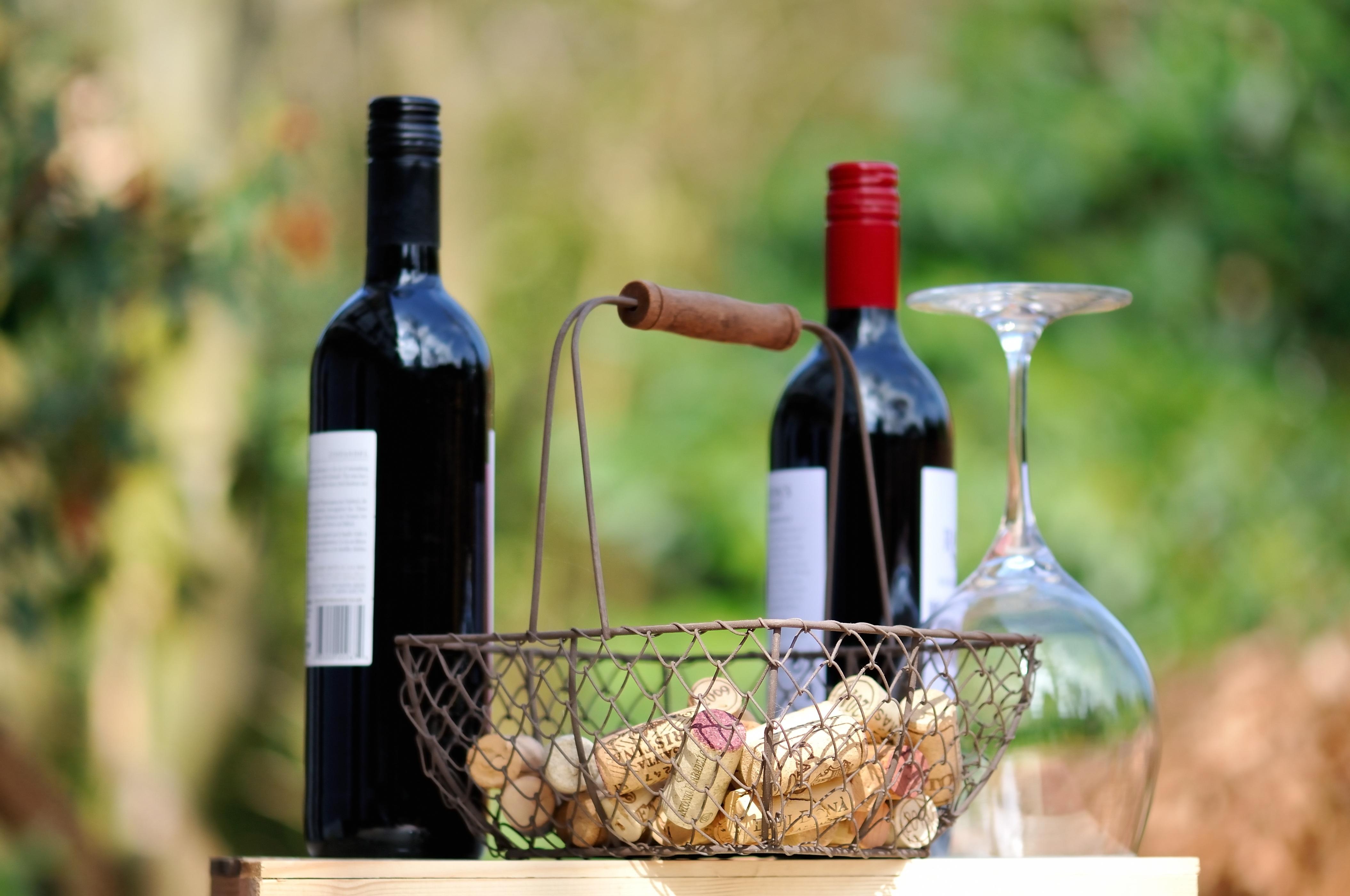 víno piknik